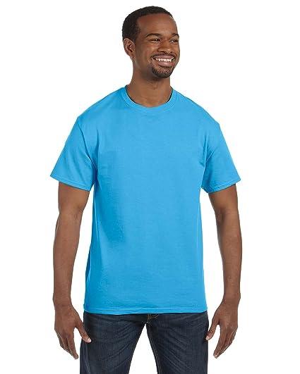 de7508a20a972 Hanes 5250 Adult Tagless T-Shirt - Aquatic Blue
