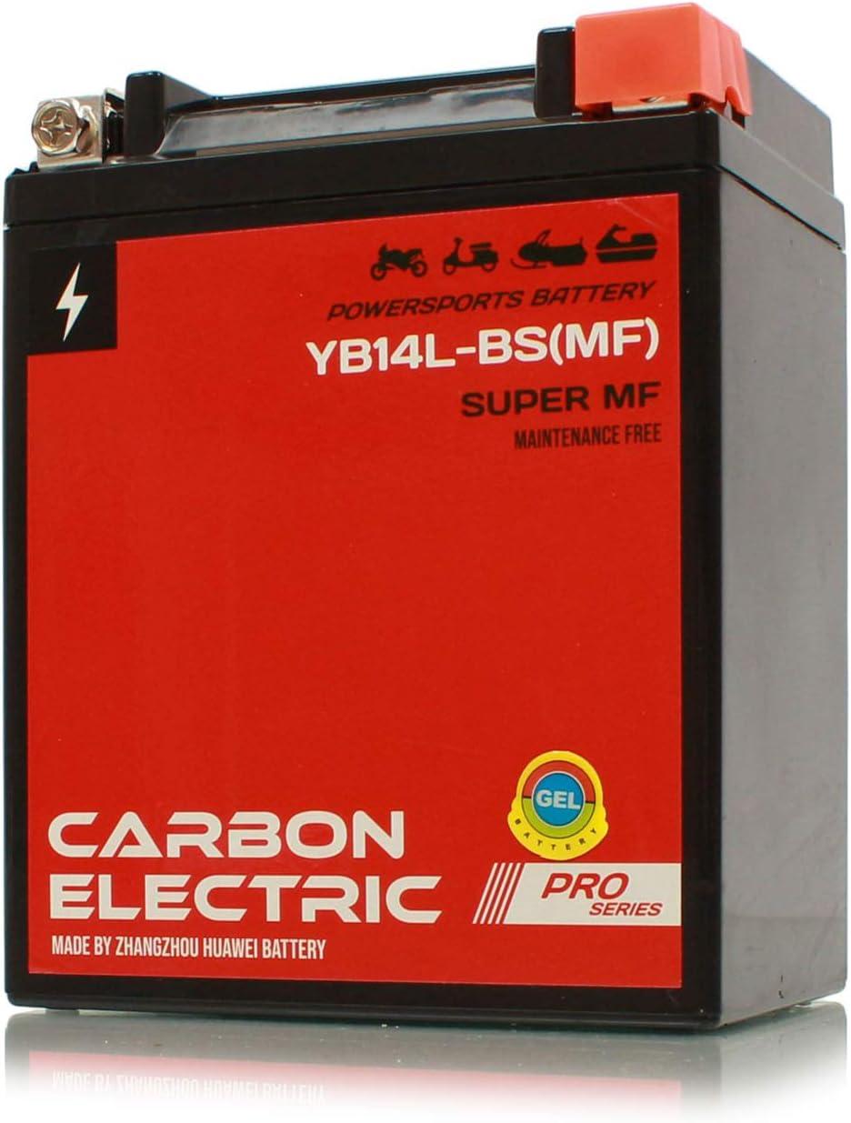 Carbon Electric YB14L-BS MF Gel Batterie 12 V 14 Ah Wartungsfrei Versiegelt Motorrad Roller Motorradbatterie Rollerbatterie