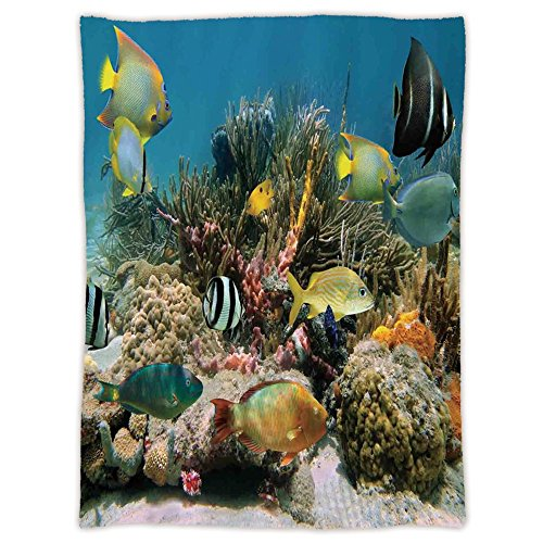 iPrint Super Soft Throw Blanket Custom Design Cozy Fleece Blanket,Ocean,Colorful Coral Colony on Reef Beautiful Shoal of Tropical Fish Caribbean Sea Picture,Multicolor,Perfect for Couch Sofa or Bed