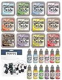 Tim Holtz Distress Oxides Ink Pad and Tim Holtz Distress Oxides Reinker Bundle Summer 2018 Colors with 10 Pixiss Daubers