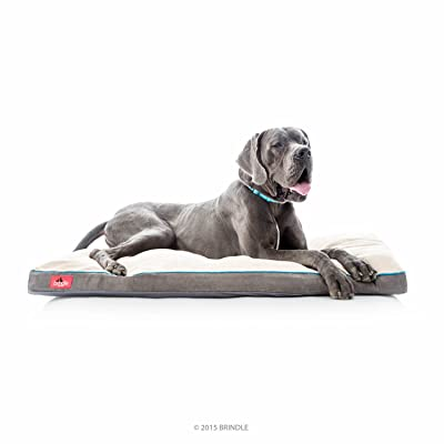 Brindle Soft Memory Foam Dog Bed Review