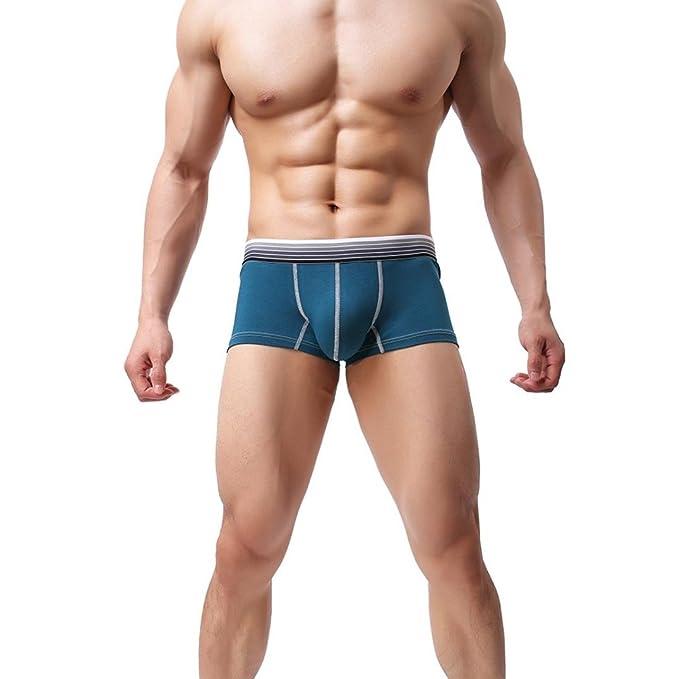 Amazon.com: oldeagle caliente hombres Sexy ropa interior ...