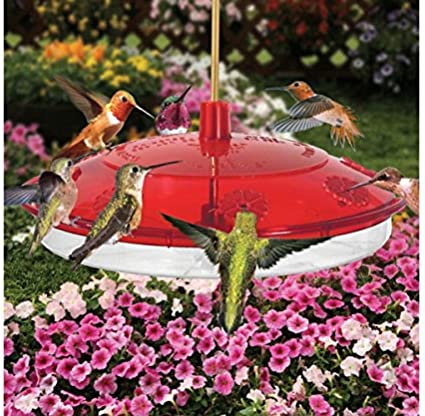 Amazon Com Droll Yankees 2 Pack New Large Hummingbird Feeder Garden Outdoor