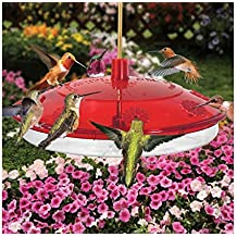 Droll Yankees Inc Large Hummingbird Feeder Leak-Proof Design UV Stabilized Impact Resistant