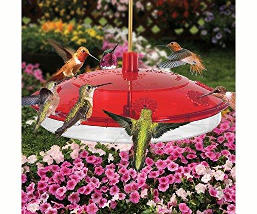 Droll Yankees Inc Large Hummingbird Feeder Leak-Proof Design UV Stabilized Impact (Garden Opoly Game)