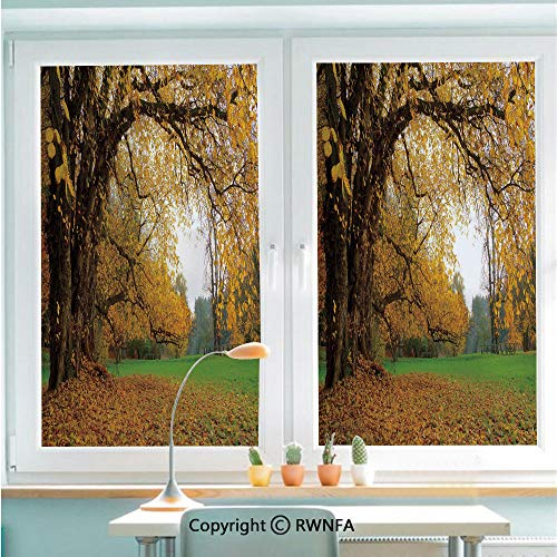 RWNFA Window Glass Sticker Door Mural Autumnal Park with Big Ancient Oak Tree and Deciduous Leaves Greenery Static Cling Privacy No Glue Film Home Decorative 22.8x35.4inch,Earth Yellow Brown Green