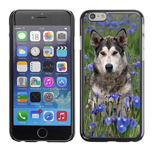 """Premio Sottile Slim Cassa Custodia Case Cover Shell // F00003131 Scrabble the Dog // Apple iPhone 6 6S 6G PLUS 5.5"""""""