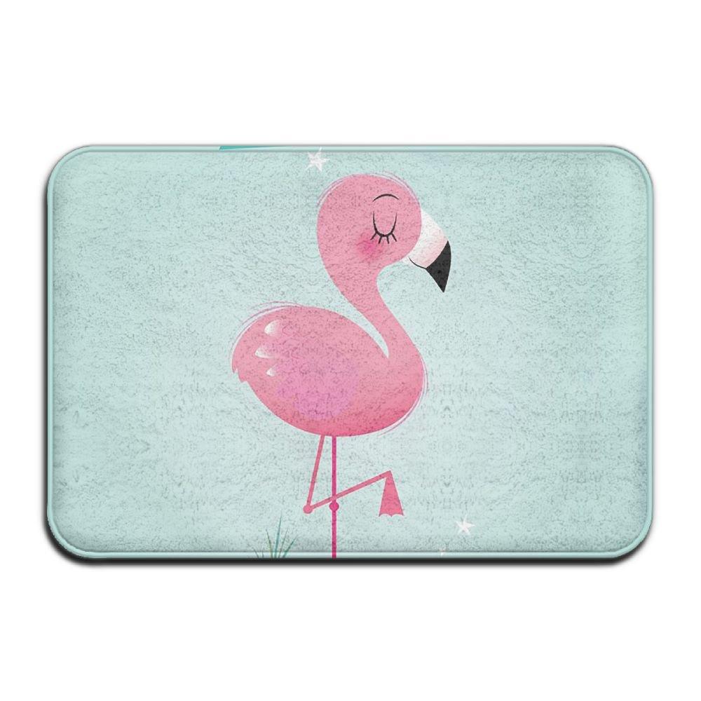 BINGO BAG Bling Flamingo Indoor Outdoor Entrance Printed Rug Floor Mats Shoe Scraper Doormat For Bathroom, Kitchen, Balcony, Etc 16 X 24 Inch