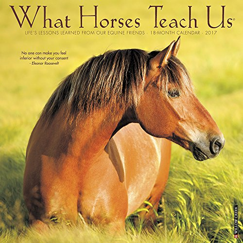 Horse Calendars Kritters In The Mailbox Animal Items