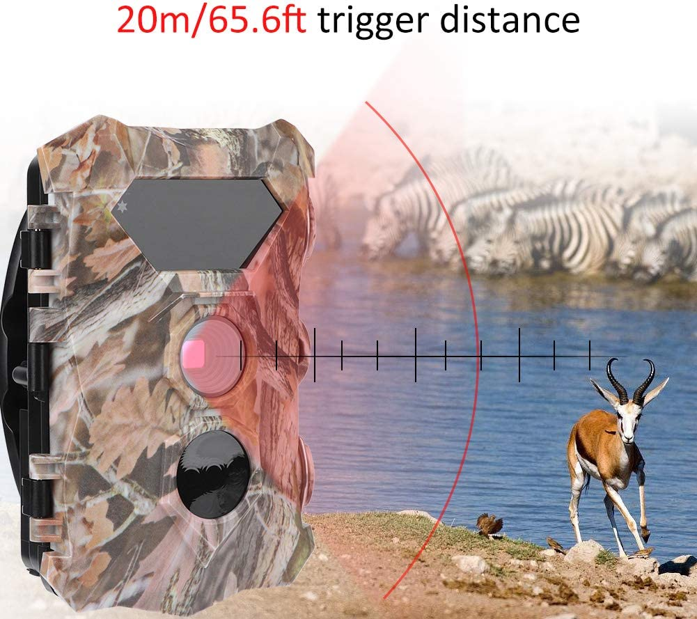 la Recherche sur la Faune pour la Surveillance de la s/écurit/é Annjom Cam/éra /étanche la Surveillance de la Faune cam/éra de Surveillance de Camouflage Intelligente lobservation des Animaux