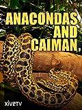 Anacondas and Caiman