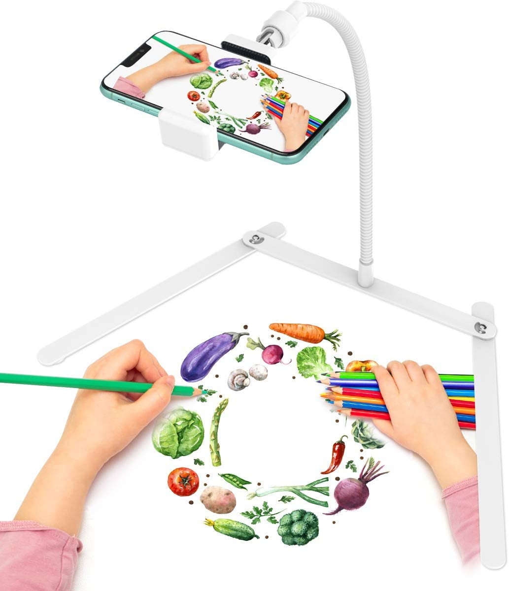 Adjustable Gooseneck Cellphone Holder,Overhead Phone Mount,Table Top Teaching Online Stand for Live Streaming and Online Video and Food Crafting Demo Drawing Sketching Recording(White)
