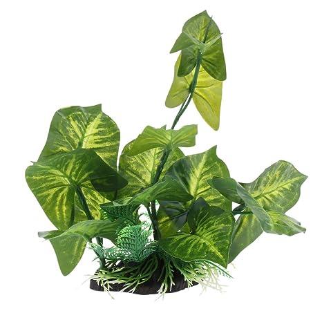 FLAMEER Paisajes de Terrarios Reptiles Plantas Complimentos Pecera Adornos Decoración Ornamento Duradero - QL02