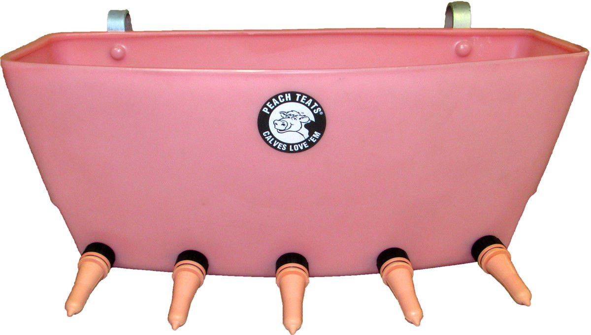Peach Teat Calf Feeder with 5 Teats 8 Gallon Fits Over Fence