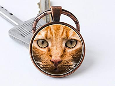 Beautiful Dandelion Llavero de gato rojo, llavero para ...