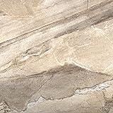 Emser Tile F02EURACH1313 Eurasia Chiara - Porcelain Tile, 13 x 13''
