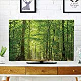 Best Romantic Time TV Trays - Jiahonghome TV dust Cover Deciduous Forest in Summertime Review