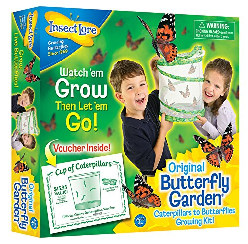 insect-lore-original-butterfly-garden-with-voucher