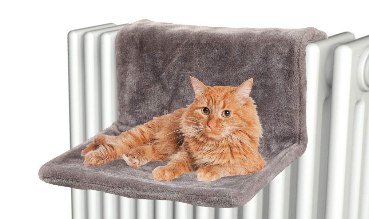 ZOLUX Hamaca Gato para radiador: Amazon.es: Productos para mascotas