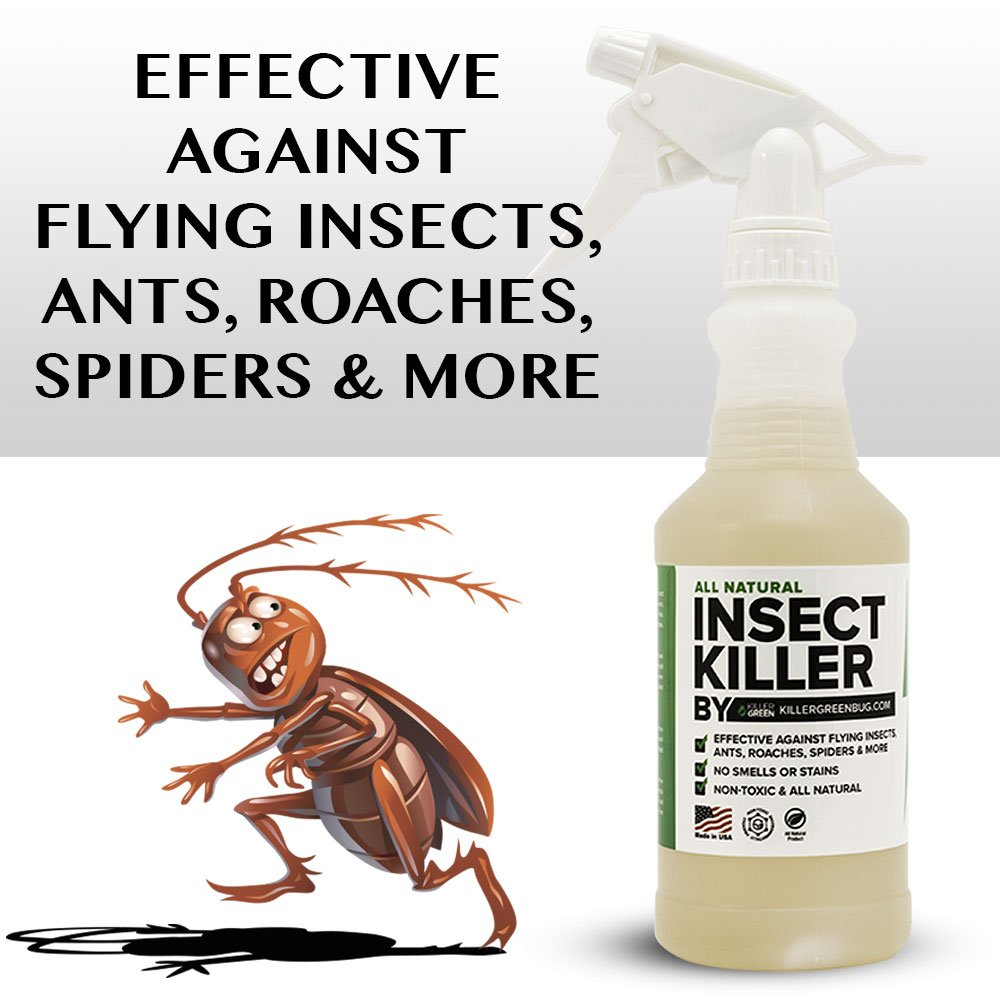 amazon com all natural non toxic insect killer spray by killer