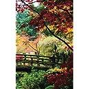 Internet Password Organizer: Autumn Woods (Discreet Password Journal)
