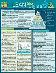 Lean Six Sigma - Quick Study (Quick Study Business)