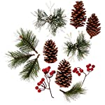 Factory-Direct-Craft-Package-of-Holiday-Decor-Motif-for-Creating-Focals-Centerpieces-and-Displays