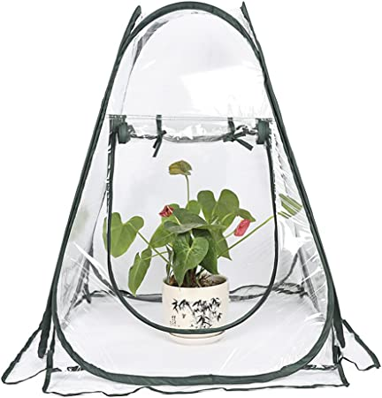 Mini Pop Up Greenhouse Outside Inside Plant Cover Green House Plants Patio New