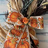 """Pumpkin Patch Natural Wired Ribbon - 2 1/2"""" x 10"""