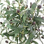 JAROWN-5-pcs-28-Green-Olive-Artificial-Plants-Branches-Fruits-Fake-Flowers-Branch-Leaves-for-Home-Office-Crafts-Decoration