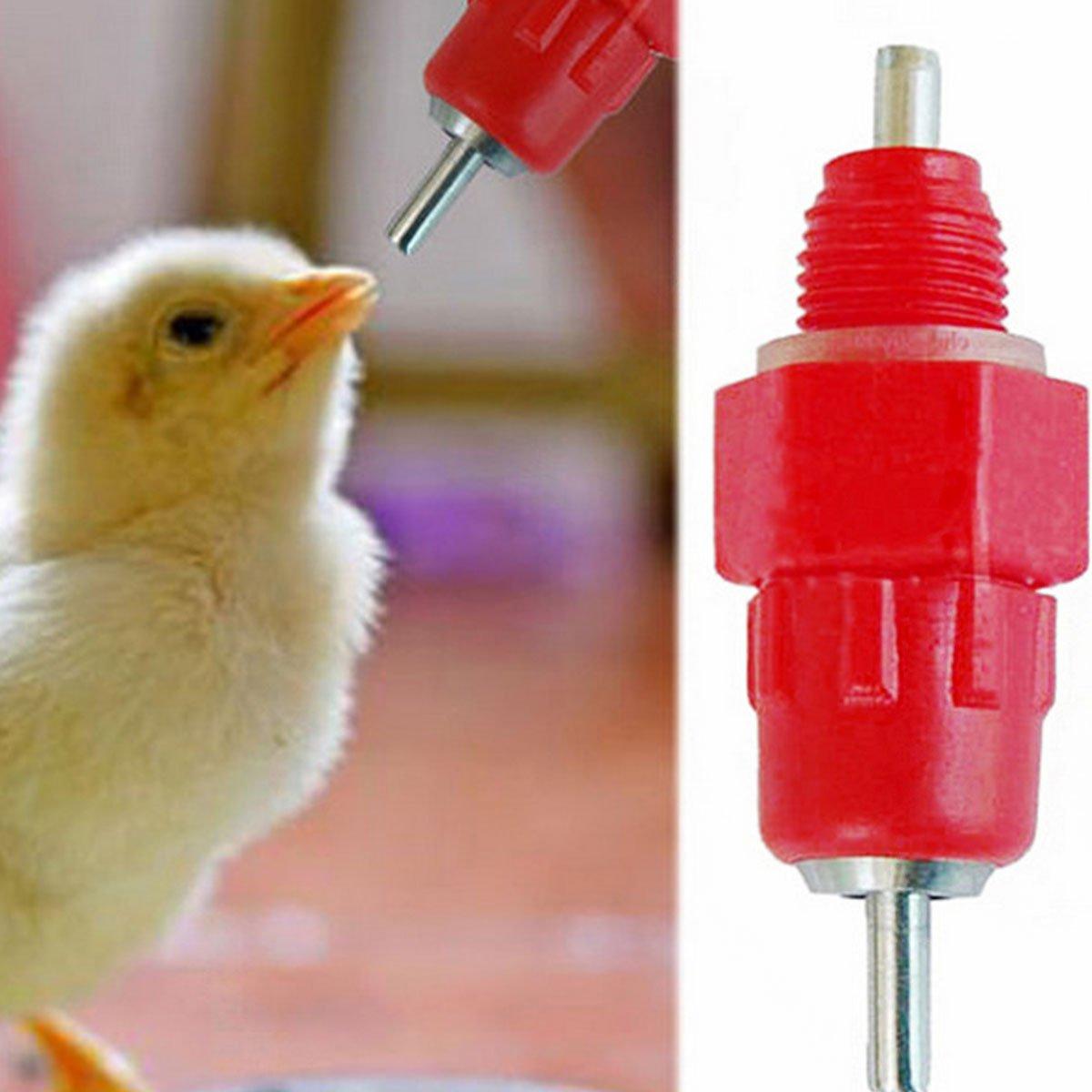 Evilandat 20/50 Paquete Alimentador de Pezón de Agua Automático Waterer Alicate de Bebedor para Pato de Pollo Aves Tornillo en 360 ° Súper Flujo: Amazon.es: ...