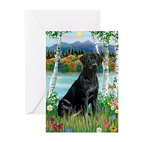Amazon Cafepress Birches Black Labrador Greeting Cards 6