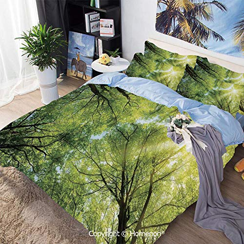 3-Piece Bed,The Warm Spring Sun Through The Canopy of Tall Beech Trees Romantic Scene,Twin Size,Hypoallergenic,Cool Breathable,Green Yellow
