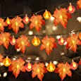3 Pack Thanksgiving Fall Decorations Pumpkin Maple Leaf Garland String Lights, 30 ft 30 LED 30 Pumpkin Lights Waterproof Seasonal Light for Fall Party Decorations Indoor Outdoor Home Holiday Decor