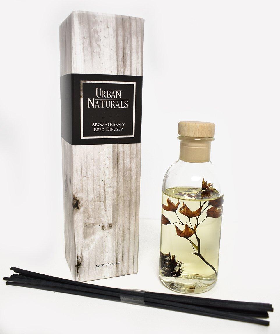 Urban Naturals Mountain Air Scented Fragrance Oil Reed Diffuser & Room Freshener | Golden Apples, Birch Wood Cashmere, Fennel & Cedar | Decorative Botanicals | Vegan | by Urban Naturals (Image #2)