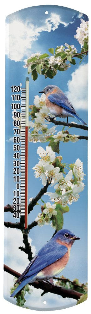 Heritage America by MORCO 375EB2 Bluebird in Apple Tree Outdoor or Indoor Thermometer, 20-Inch