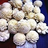 45 Jasmine Sola wood Diffuser Flowers 3.5 cm