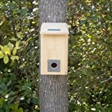 Coveside Small Winter Roost. Safe Bird House for Protection from Predators and Cold Weather. Made in the USA.