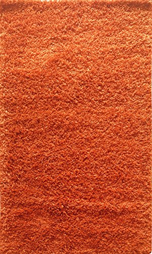 ADGO Chester Shaggy Collection Soft Silky High Pile Fluffy Area Rugs for Living Room & Dining Room | Cozy Shag Indoor & Outdoor Floor Rug (5' x 7', S29 - Orange)