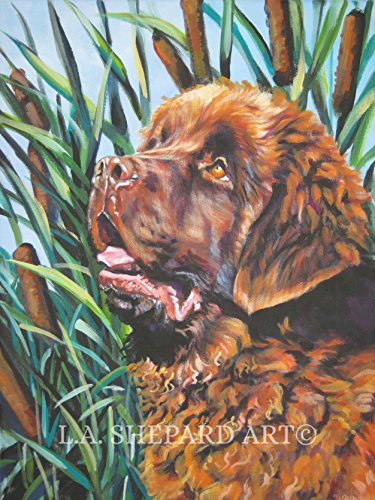 - A Newfoundland dog art portrait print of an LA Shepard painting 8x10