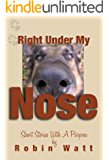 Right Under My Nose - Short Stories with a Purpose