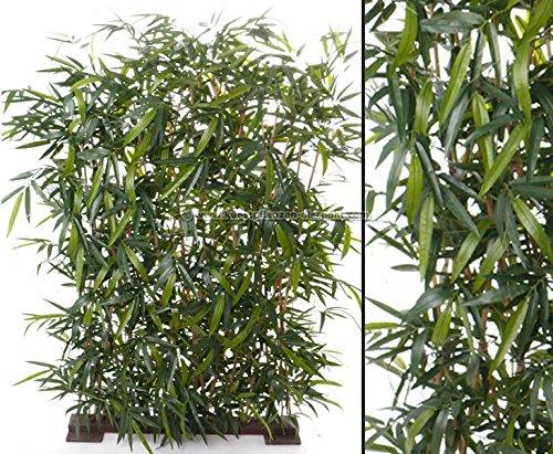 Bambushecke 3200 Blätter mit UV bzw. Sonnenschutz in den Abmessungen 120x180cm - künstliche Hecken Kunstpflanzen Sichschutz a