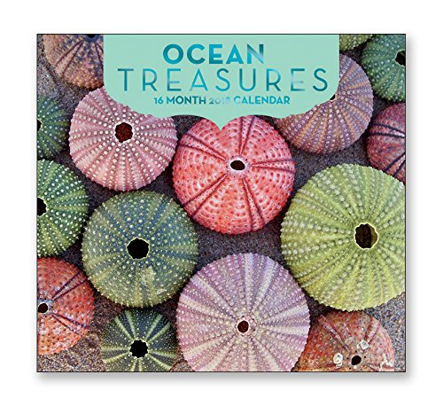 16 Month Wall Calendar 2018 - Ocean Treasures - Each Month Displays Full-Color Photograph. September 2017 - December 2018 Planning Calendar
