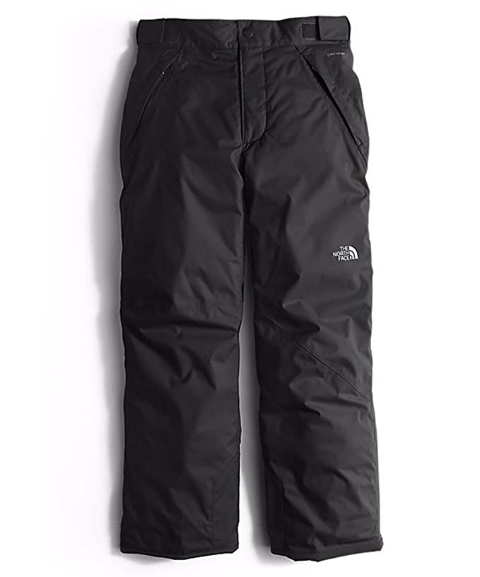 the north face insulated