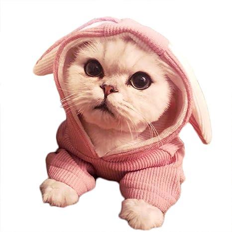 feiling Jersey Camiseta para Gatos y Perros pequeños Cachorros Sudadera con Capucha Conejo Disfraz Primavera Otoño