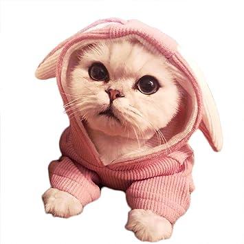 feiling Jersey Camiseta para Gatos y Perros pequeños ...