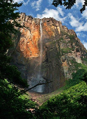 Adult Jigsaw Puzzle Canaima National Park Angel Falls Waterfall Venezuela (Park Waterfall)