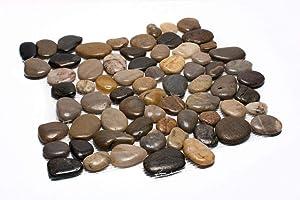 """Margo Garden Products PT-MPMIX Rain Forest 12""""x12"""" Pebble Tiles (5.0 sq ft/case)"""