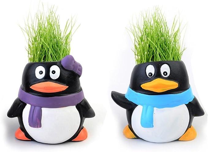 Pingüino Mini Planta purificador de aire Agua grabación Animales ...