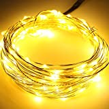 KCRIUS(TM) 12V DC Starry Silver Coating Copper Wire LED Lights, 10M LED String Lights with Power Adapter Supply, Including 100pcs Individual Leds